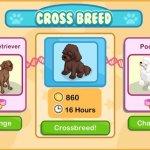 Скриншот Pet Shop Story – Изображение 3