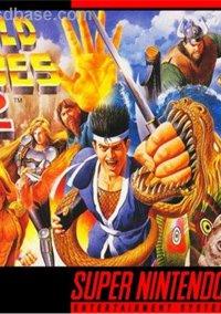 World Heroes 2 – фото обложки игры