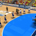 Скриншот Handball Simulator: European Tournament 2010 – Изображение 13