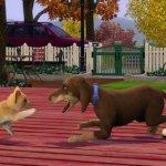 Скриншот The Sims 3: Питомцы  – Изображение 14