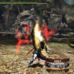 Скриншот Monster Hunter XX – Изображение 1