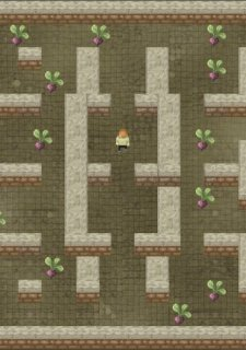 The Dark Maze