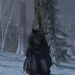 Скриншот Assassin's Creed 3 – Изображение 20