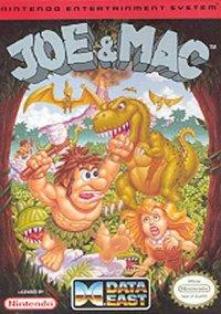 Joe & Mac Caveman Ninja – фото обложки игры