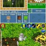 Скриншот Viva Piñata: Pocket Paradise – Изображение 3