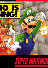 Обложка Mario Is Missing!