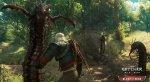 Геральт попадает в грибное королевство на скриншотах из «Крови и вина» - Изображение 3