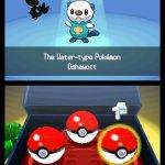Скриншот Pokémon Black Version/White Version – Изображение 8