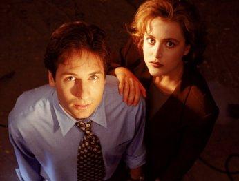 Истина где-то там. 20 лет The X-Files
