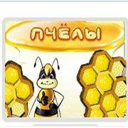 Обложка Пчелы