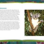 Скриншот My Animal Centre in Australia – Изображение 2