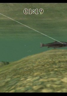 Reel Fishing Challenge
