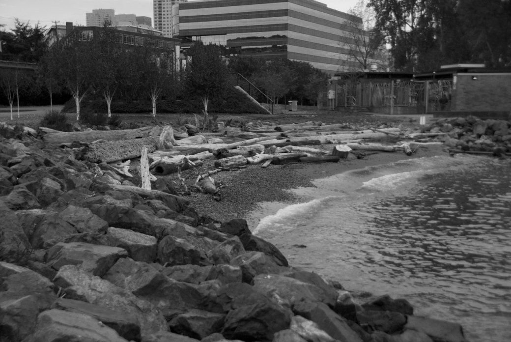 Тур по Сиэтлу – городу ветров, дождей и чаек. - Изображение 32