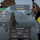 Скриншот The Fisherman — Fishing Planet – Изображение 3