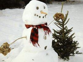 От «снеговиков» к гендерно-нейтральным «снеголюдям»: британцы учат детей политкорректности