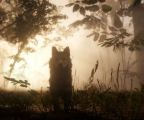 Гифка дня: собачка неоценила, как еепроменяли наRed Dead Redemption 2