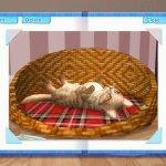Скриншот Petz Catz 2 – Изображение 3