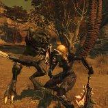 Скриншот Divinity 2: Ego Draconis – Изображение 7