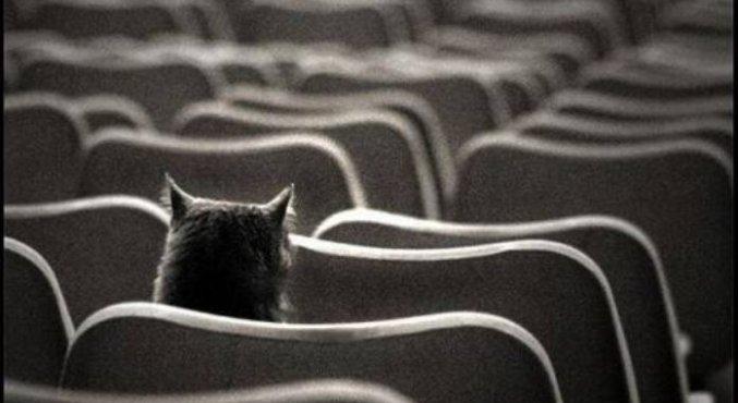"""Конкурс """"Одиночество в сети"""""""