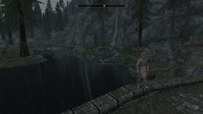 Ничего не видно! Энтузиаст сделал в Skyrim невероятно реалистичный ливень | Канобу - Изображение 2535