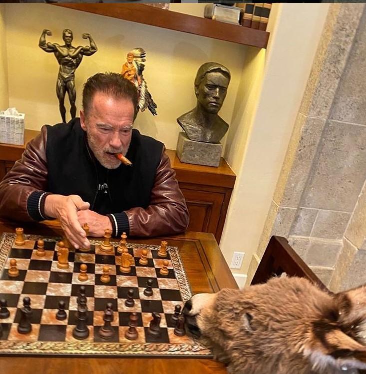 Шварценеггер играет вшахматы сослом. Милее самоизоляцию представить трудно | Канобу - Изображение 1123