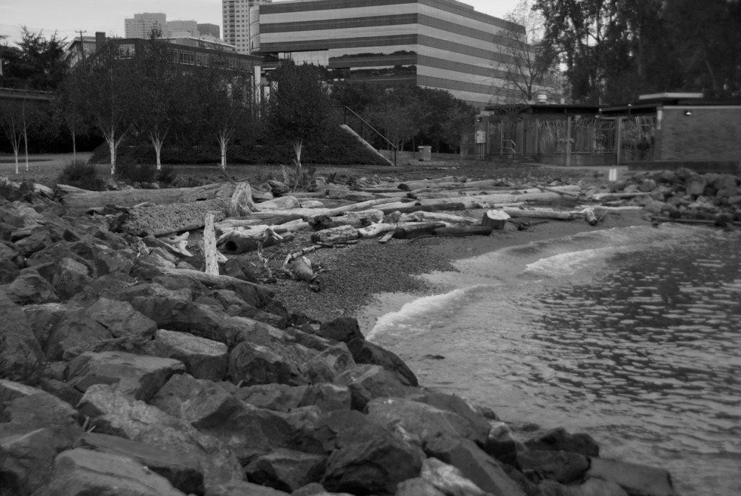 Тур по Сиэтлу – городу ветров, дождей и чаек   Канобу - Изображение 21