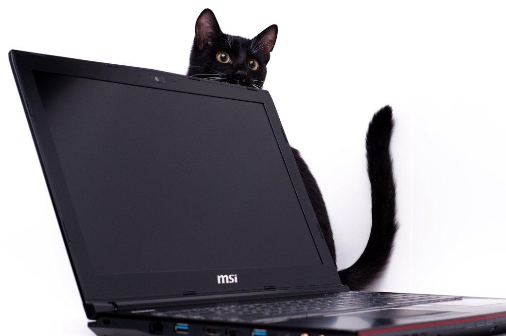 Тест игрового ноутбука MSI GE62VR Apache Pro   Канобу - Изображение 4